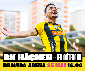 rudy-300×250-IFK@